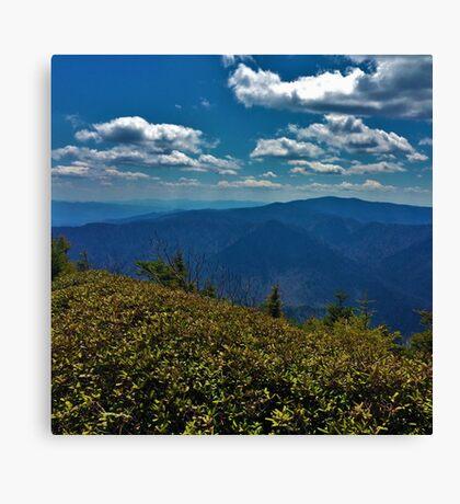Blue Ridge Mountains Canvas Print