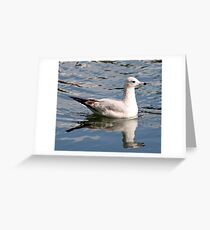 Pretty Swimmer Greeting Card