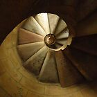 Looking Up; Spiral Staircase, Sagrada Familia by wiggyofipswich