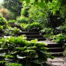 Green... by Karen  Helgesen