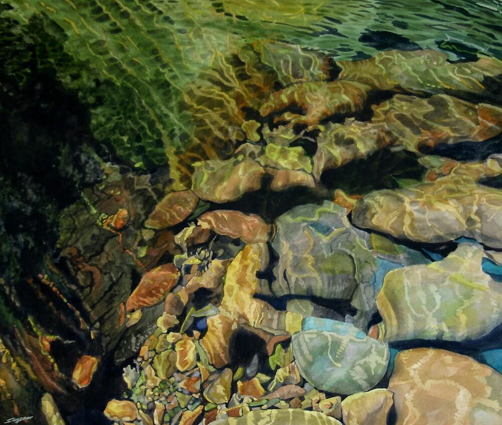 Riverbed by Freda Surgenor