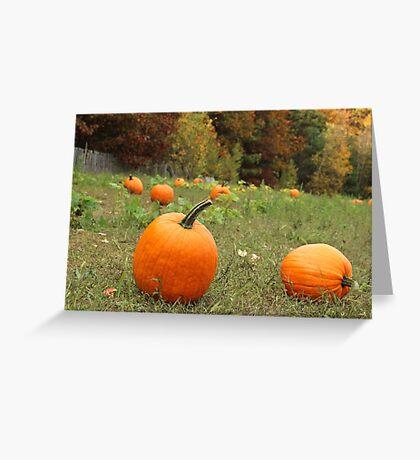 Pumpkin Picking Greeting Card