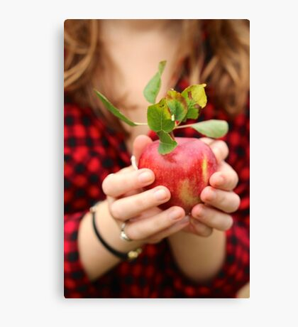 Red, Red Apple Canvas Print