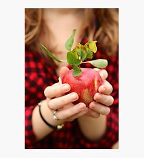 Red, Red Apple Photographic Print