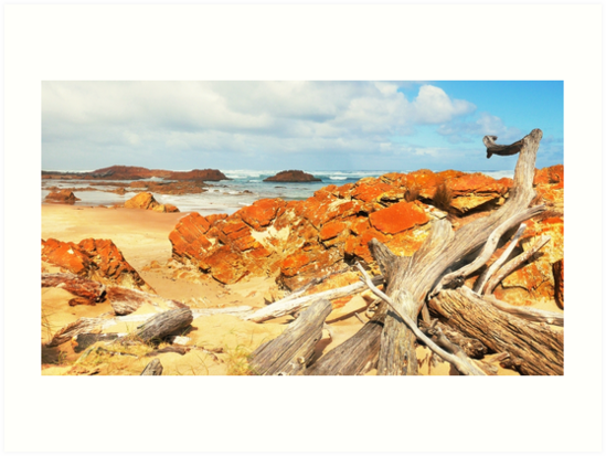 Washed Up  'Edge of the World' - Tasmania by Lexa Harpell
