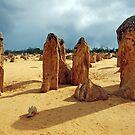 The Pinnacles, Cervantes, Western Australia by Adrian Paul