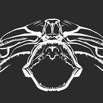 Hammerhead Skull by silverman00