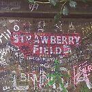 Strawberry Fields. by Peter Allton