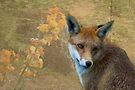 Foxy's world by Foxfire