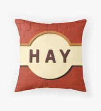 Hay Railway Station Throw Pillow