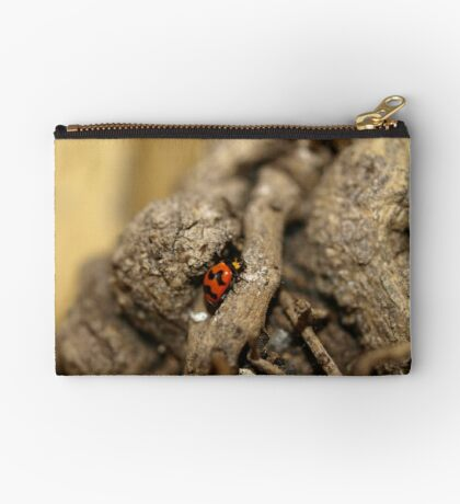 Lady beetle Studio Pouch