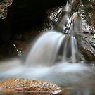 Waterfall In Way Way Forest NSW by Kylie  Metz