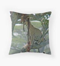 Serengeti Leopard Kill, Tanzania, Africa Throw Pillow