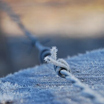 Ice spikes by GeoGecko