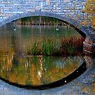 Bridge Reflections by Larry Trupp