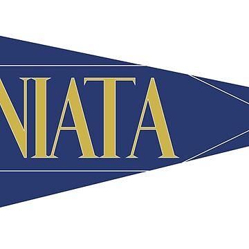 Juniata College Pennant Sticker by cassadunn