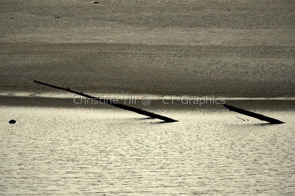 Driftwood Sandspit at Klamath River Mouth, California by Christine Till  @    CT-Graphics