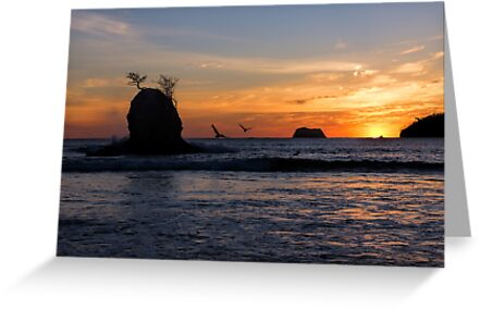 Carrillo Sunset by Tracy Riddell