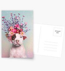 Flower Power, Rum Postcards