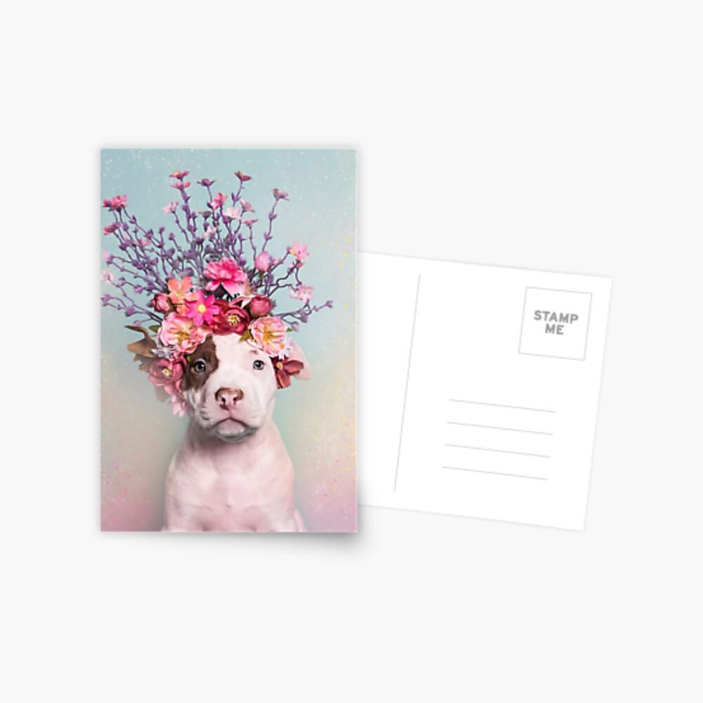 Flower Power, Rum Postcard