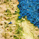 Land & Sea by Wayne Gerard Trotman