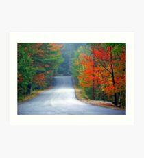 Scenic Road By Zephyr Lake Art Print