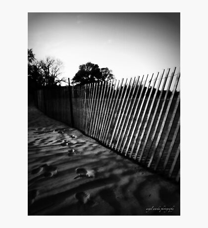 fence on the beach Photographic Print