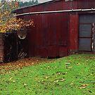 old Strzelecki farm by Tony Middleton