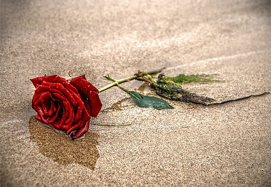 Love In The Sand by Andrew Pounder