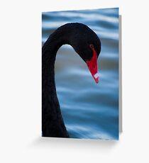 Swan 3 Greeting Card