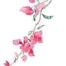 Reddish Pink Bougainvillea flower watercolor  by ColorandColor