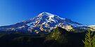 Blue Rainier Panorama by Tori Snow