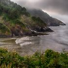 The Oregon Coast by Kathy Weaver