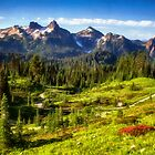 On the Trail at Mount Rainier National Park by Kathy Weaver