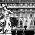 Statue in Jardin du Palais Royal in Black and White by randyharris