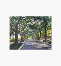 Rice University South Campus  Art Board Print