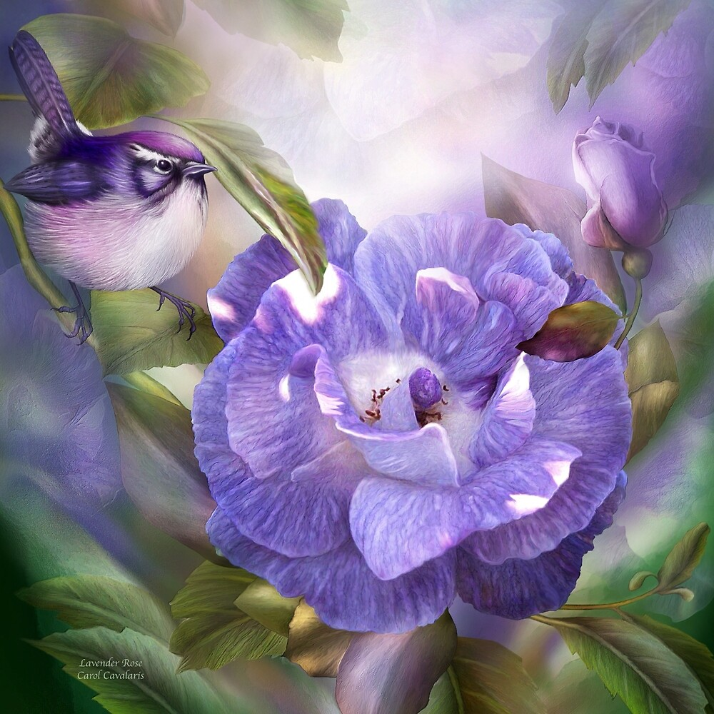 Цветы-фэнтези фотохудожницы Кэрол Каваларис