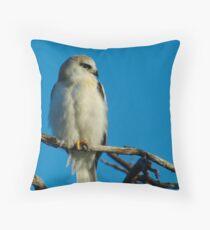 Juvinile Black-shouldered Kite Throw Pillow