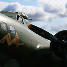 Sally B by Wayne Gerard Trotman