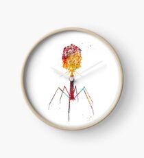 Bacteriophage Clock