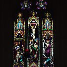 Window of Christ Church Anglican Cathedral, Ballarat, Victoria by Bev Pascoe