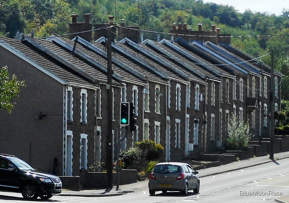 Eine Straße in Hafodyrynys, Wales von BlueMoonRose