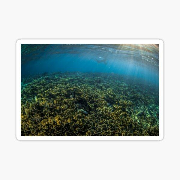 Dusk snorkel Sticker