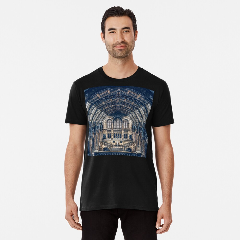 Architectural Reflections Premium T-Shirt