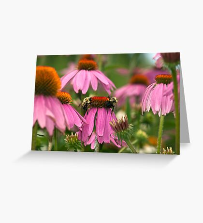 Us Time Greeting Card