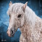Painting of a Brindle Horse with White Coat by ibadishi