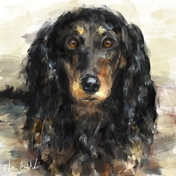 A Beautiful Artistic Painting of a Dachshund  by ibadishi