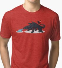 Toothless & Totodile Tri-blend T-Shirt