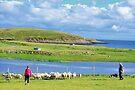 Lewis: Herding Sheep by Kasia-D