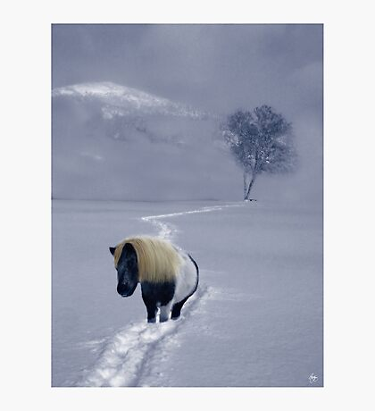 The Mane and the Mountain Photographic Print